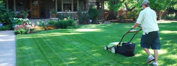 Lawn Care Services by Clean Air Lawn Care - Mowing