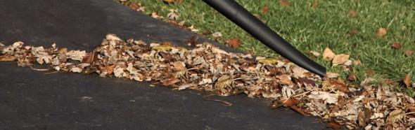 Yard Clean Up Blowing Clean Air Lawn Care